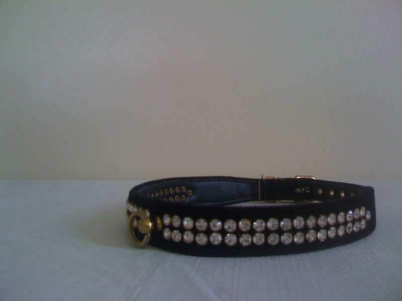 Crystal Studded Dog Collar